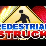 56-year-old Vannassa Willingham killed in auto-pedestrian crash in Santa Rosa